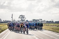 Tim Declercq (BEL/Deceuninck - QuickStep) on the job<br /> <br /> 82nd Gent-Wevelgem in Flanders Fields 2020 (1.UWT)<br /> 1 day race from Ieper to Wevelgem (232km)<br /> <br /> ©kramon