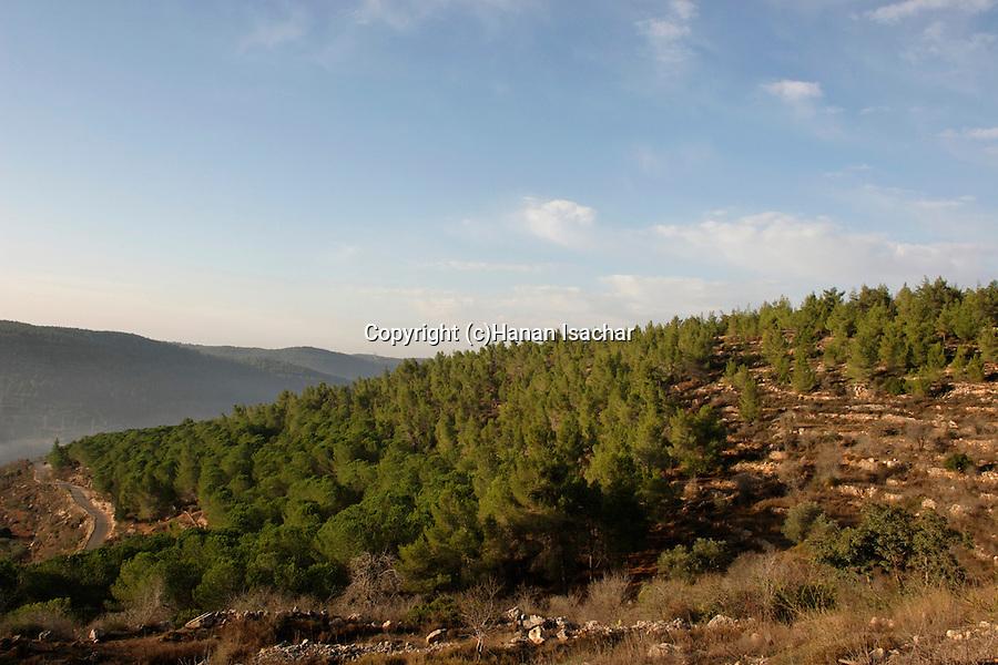 Israel, Jerusalem Mountains. Mount Eitan