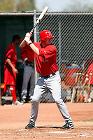Mark Trumbo - Los Angeles Angels - 2009 spring training.Photo by:  Bill Mitchell/Four Seam Images