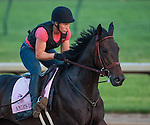 Amie's Dini during morning workouts for the 138th Kentucky Derby at Churchill Downs in Louisville, Kentucky on May 3, 2012.