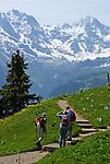 CHE, SCHWEIZ, Kanton Bern, Berner Oberland, Schynige Platte: beliebtes Wandergebiet oberhalb von Interlaken - 3 Wanderer vorm Breithorn (3.782 m) | CHE, Switzerland, Bern Canton, Bernese Oberland, Schynige Platte: popular hiking area above Interlaken- 3 hikers and Breithorn mountain (12.409 ft.)