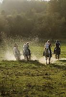 Europe/France/Limousin/87/Haute Vienne:Randonnée équestre dans le Parc Naturel Régional de Millevaches en Limousin