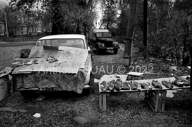 Samara, Russia  .October 1997.Meat being sold off the hood of a car near a tram station just outside the Aviacor factory which produces TU-154M passenger planes. Production of the planes has nearly stopped since 95' make daily life here very difficult..