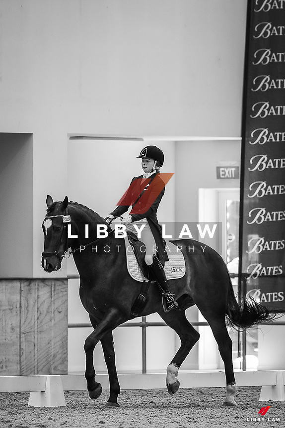 NZL-Anya Noble rides Geronimo Star. Andrea Raves Super 5 League -Test Int B. 2020 NZL-Bates Saddles NZ Dressage Championships. NEC Taupo. Friday 20 November 2020. Copyright Photo: Libby Law Photography
