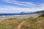 Trail through wildflowers to Ophir Beach lies just south of Sisters Rock State Park, Oregon Coast, USA, and unimproved state park formerly known as the harbor of Frankport, Oregon.  On the Oregon Coast south of Humbug Mountain and Port Orford, it once served as a coastal harbor complete with small gauge railway.  A natural harbor once used for smuggling marijuana.  Also known as Devil's Backbone.