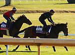 Equilateral, trained by trainer Charles Hills, exercises in preparation for the Breeders' Cup Turf Sprint and Audarya, trained by trainer James R. Fanshawe, exercises in preparation for the Breeders' Cup Filly & Mare Turf at Keeneland Racetrack in Lexington, Kentucky on November 4, 2020.