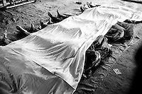 Dead bodies lay at the site of the Rana Plaza building collapse in Savar, near Dhaka, Bangladesh