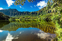 The Ko'olau Mountains and blue sky with clouds are reflected in the lake at Ho'omaluhia Botanical Garden, Kane'ohe, Windward O'ahu.