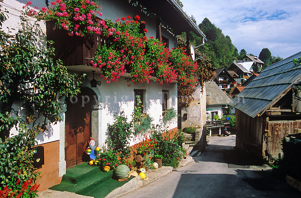 Flowers spill from flower boxes at village of Srednjavas in the Julian Alps in the Bohinj area of Slovenia, AGPix_0559.