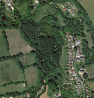 BNPS.co.uk (01202 558833)<br /> Pic: Google<br /> <br /> Woolcombe Wood aerial.<br /> <br /> £125,000 - For your own idyllic rustic hideaway...<br /> <br /> Fancy the unique chance to own a remote woodland shack in its own private valley near Lyme Regis in Dorset?<br /> <br /> The timber chalet, with a pond, decking and a log bridge across a stream, is buried in the middle of 10 acres of private woodland near the seaside resort.<br /> <br /> The primitive but eco-friendly chalet can be slept it overnight but can't be used as a permanent residence.