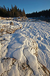 Pancake ice formations at low tide along West Pond Cove on the Schoodic Peninsula in Acadia National Park, Maine, USA