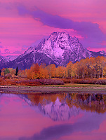 749450321v dawn alpenglow lights up fall colored aspens mount moran and the teton range with the snake river in the foreground at oxbow bend in grand tetons national park wyoming