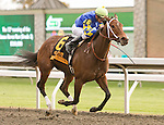 23 October 2010.  Hilda's Passion and Corey Lanerie take the 12th running of the Lexus Raven Run (GRII) $250,000 at Keeneland Racecourse.