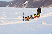 Gerry Wilomitzer on the Yukon River two miles after leaving the village checkpoint of Ruby at sunset during the 2010 Iditarod, Interior Alaska