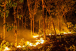Bushfire, Arnhem Land, Northern Territory, Australia<br /> <br /> A fire crackles through a woodland, but it is not completely destructive. It supports the ecological system by burning off dead grass and shrubs and stimulates regrowth. Trees remain largely unscathed by the swift fires, which appear with astounding frequency across Australia's vast stretches of open country.<br /> <br /> Canon EOS-1Ds Mark II, EF16-35mm f/2.8L II USM lens, f/5 for 2.5 seconds, ISO 400