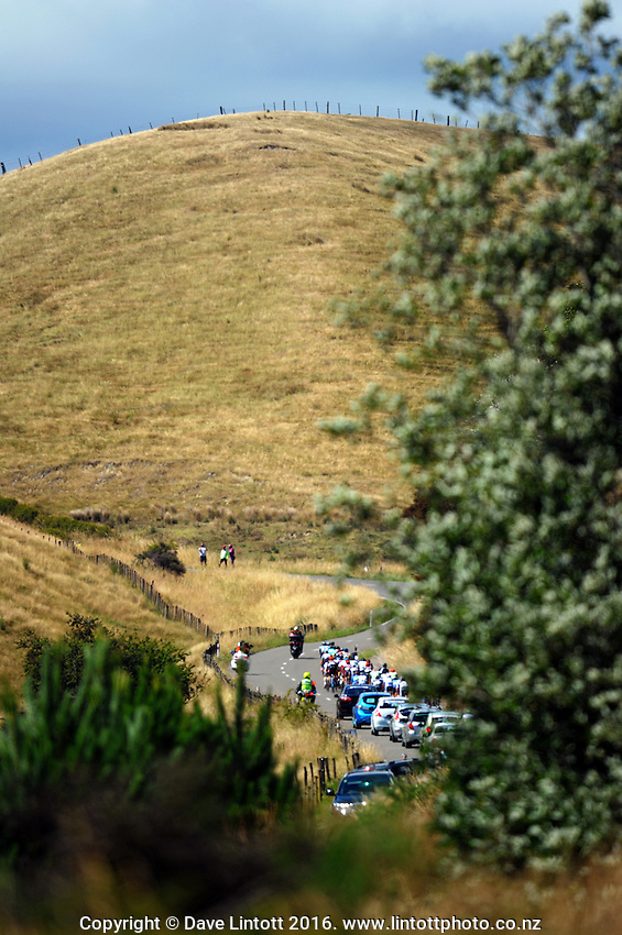King of the Mountain, Miller Road. UCI Oceania Tour - NZ Cycling Classic stage one - Masterton to Gladstone circuit in Wairarapa, New Zealand on Wednesday, 20 January 2016. Photo: Dave Lintott / lintottphoto.co.nz
