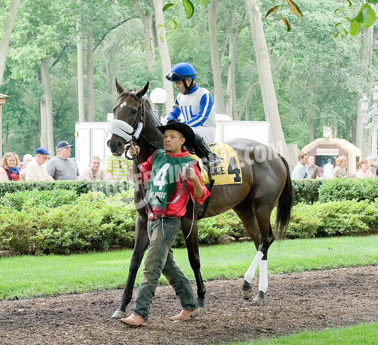 Shirley She Can before The Rooney Memorial Stakes at Delaware Park on 6/18/11