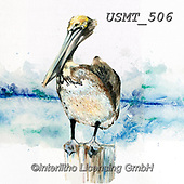 Malenda, REALISTIC ANIMALS, REALISTISCHE TIERE, ANIMALES REALISTICOS, paintings+++++,USMT506,#a#, EVERYDAY