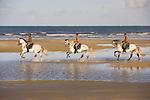 Lusitano horses and vaqueros, Bahia, Brazil