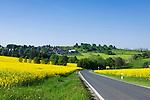 Germany, Free State of Thuringia, near Allersdorf (Herschdorf): yellow rape fields at rural road L 2389 | Deutschland, Freistaat Thueringen, bei Allersdorf (Herschdorf): Rapsfelder an der L 2389