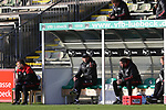 22.11.2020, Dietmar-Scholze-Stadion an der Lohmuehle, Luebeck, GER, 3. Liga, VfB Luebeck vs FC Bayern Muenchen II <br /> <br /> im Bild / picture shows <br /> Trainer Holger Seitz (FC Bayern Muenchen II) auf der Bank<br /> <br /> DFB REGULATIONS PROHIBIT ANY USE OF PHOTOGRAPHS AS IMAGE SEQUENCES AND/OR QUASI-VIDEO.<br /> <br /> Foto © nordphoto / Tauchnitz