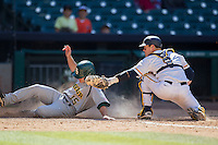 California Golden Bears catcher Andrew Knapp #5 tags out baserunner Adam Toth #15 at the plate during the NCAA baseball game against the Baylor Bears on March 1st, 2013 at Minute Maid Park in Houston, Texas. Baylor defeated Cal 9-0. (Andrew Woolley/Four Seam Images).