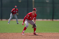 Cincinnati Reds second baseman Cash Case (4) during a Minor League Spring Training game against the Los Angeles Angels at the Cincinnati Reds Training Complex on March 15, 2018 in Goodyear, Arizona. (Zachary Lucy/Four Seam Images)