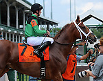 May 30, 2015  Favorite Work All Week (jockey Florent Geroux) in the post parade of the G3 Aristides at Churchill Downs. ©Mary M. Meek/ESW/CSM