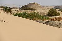 EGYPT, Farafra, Nationalpark White Desert , shaped by wind and sand erosion/ AEGYPTEN, Farafra, Nationalpark Weisse Wueste, durch Wind und Sand geformte Landschaft