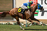 DEL MAR, CA  AUGUST 17: #6 Mr Vargas, ridden by Joseph Talamo, in the stretch of the Green Flash Handicap (Grade lll) on August 17, 2019 at Del Mar Thoroughbred Club in Del Mar, CA. (Photo by Casey Phillips/Eclipse Sportswire/CSM)