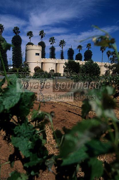Océanie/Australie/Australie Méridionale/Barossa Valley : Château Dorrien - Vignoble et chais