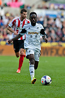 Saturday 19 October 2013 Pictured: ( L-R )   Nathan Dyer of Swansea<br /> Re: Barclays Premier League Swansea City vSunderland at the Liberty Stadium, Swansea, Wales