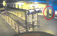"Pictured: CCTV screen grab showing the moment 52 year old Martin Maguire, attacked and killed a seagull at Hollyhead Railway Station in north Wales, UK. <br /> Re: A man who stamped a seagull to death in Holyhead train station has been convicted under the Animal Cruelty Act.<br /> Martin Maguire, 52, and of no fixed address, was found guilty of intentionally killing a wild bird at Caernarfon Magistrates' Court on 4 February, following the shocking and brutal incident last year.<br /> The court heard that at around 5:30am on 7 August, Maguire followed a seagull who was walking down a platform and purposely trapped it into a corner by some poster boards.<br /> CCTV shows Maguire then kicking and stamping down on the head of the seagull several times before walking away, killing it in the process.<br /> A member of station staff was starting their shift soon after and found the dead seagull with a broken neck and snapped wing.<br /> After an investigation by BTP officers, Maguire was arrested after being spotted at Holyhead station in November.<br /> At court he was fined £180, and ordered to pay a surcharge of £30 to fund victim services, plus £200 in costs to the Crown Prosecution Service.<br /> Investigating Officer PC Harry Thompson said: ""This was a mindless and violent attack on an innocent animal, who suffered a painful, unnecessary and cruel death at the hands of Maguire.<br /> ""It was also incredibly distressing for the member of staff who found the dead seagull, and then had to watch Maguire's attack in full on CCTV.<br /> ""I am pleased we were able to bring him before the courts as violence against anyone, including animals, will not be tolerated."""