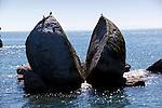 New Zealand, South Island, Nelson region, Abel Tasman National Park, bei Marahau: Split Apple Rock in Tasman Bay | Neuseeland, Suedinsel, Region Nelson, im Abel Tasman National Park, bei Marahau: der Split Apple Rock in der Tasman Bay