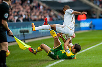 Wayne Routledge of Swansea City  and Russell Martin of Norwich City  tumble over the line during  the Barclays Premier League match between Swansea City and Norwich City played at the Liberty Stadium, Swansea  on March the 5th 2016