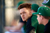 Dartmouth Big Green designated hitter Dustin Shirley (6) in the dugout during a game against the Northeastern Huskies on March 3, 2018 at North Charlotte Regional Park in Port Charlotte, Florida.  Northeastern defeated Dartmouth 10-8.  (Mike Janes/Four Seam Images)