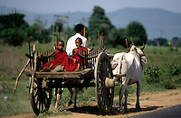 BUDDHIST NOVICE MONKS TRAVELING THE TRADITIONAL WAY IN CENTRAL MYANMAR, BURMA  USING THE LOCAL OXCART