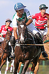 WELLINGTON, FL - FEBRUARY 19: Costi Caset of Tonkawa takes a shot at the goal as Coca Cola 9 defeats Tonkawa 8 in overtime with a Golden Goal on a Penalty 2 by Julio Arellano, in the William Ylvisaker Cup Final, at the International Polo Club, Palm Beach on February 19, 2017 in Wellington, Florida. (Photo by Liz Lamont/Eclipse Sportswire/Getty Images)