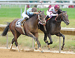 Royal Delta and jockey Mike Smith win the Delaware Handicap on Delaware Handicap Day at Delaware Park in Stanton, Delaware on July 21, 2012.  Royal Delta is owned by Besilu Stables and trained by Bill Mott.