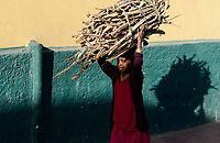 ETHIOPIA , Harar, old town, girl carry firewoods / AETHIOPIEN, Harar, Altstadt, Maedchen traegt Feuerholz
