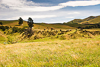 Farmland along the Lewis Pass road - Canterbury, New Zealand