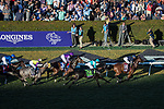 DEL MAR, CA - NOVEMBER 04: The field makes it's way on the stretch during the Longines Breeders' Cup Turf on Day 2 of the 2017 Breeders' Cup World Championships at Del Mar Thoroughbred Club on November 4, 2017 in Del Mar, California. (Photo by Ting Shen/Eclipse Sportswire/Breeders Cup)