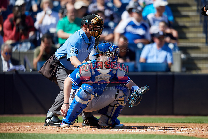 Toronto Blue Jays catcher Danny Jansen (9) and home plate umpire Dan Iassogna during a Grapefruit League Spring Training game against the New York Yankees on February 25, 2019 at George M. Steinbrenner Field in Tampa, Florida.  Yankees defeated the Blue Jays 3-0.  (Mike Janes/Four Seam Images)