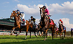 October 07 2018 : War of Will with Drayden Van Dyke races in the Dixiana Bourbon Stakes at Keeneland Racecourse on October 07, 2018 in Lexington, Kentucky. Evers/ESW/CSM