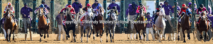 November 7, 2020 :Horses launch at the start of the Big Ass Fans Dirt Mile on Breeders' Cup Championship Saturday at Keeneland Race Course in Lexington, Kentucky on November 7, 2020. Wendy Wooley/Breeders' Cup/Eclipse Sportswire/CSM