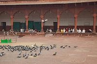 Agra, India.  Boys Studying the Koran in the Madrasa of the Jama Masjid (Friday Mosque).