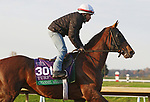 Channel Maker, trained by trainer William I. Mott, exercises in preparation for the Breeders' Cup Turf at Keeneland Racetrack in Lexington, Kentucky on November 1, 2020. /CSM