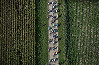 "top view of peloton riding the cobbles. <br /> <br /> Antwerp Port Epic 2018 (formerly ""Schaal Sels"")<br /> One Day Race: Antwerp > Antwerp (207km of which 32km are cobbles & 30km is gravel/off-road!)"