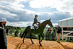 October 17, 2021: Lillian Heard (USA), aboard LCC Barnaby, before competing in the Stadium Jumping Final at the 5* level during the Maryland Five-Star at the Fair Hill Special Event Zone in Fair Hill, Maryland on October 17, 2021. Jon Durr/Eclipse Sportswire/CSM