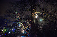 Kew Gardens in west London is lit for Christmas. 28-12-18